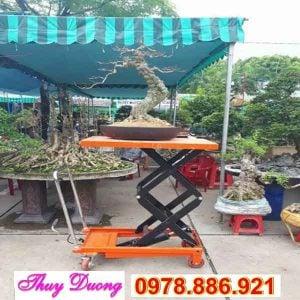 bàn nâng cây cảnh 350kg